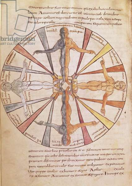 Ms 422 fol.6v Wheel of the seasons and months, from 'De Natura Rerum' by St. Isidore of Seville (vellum)