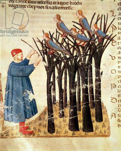 Dante and the Souls Transformed into Birds, from 'The Divine Comedy' by Dante Alighieri (1265-1321) (vellum)