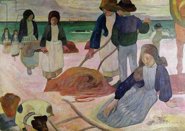 Seaweed Gatherers, 1889 (oil on canvas)