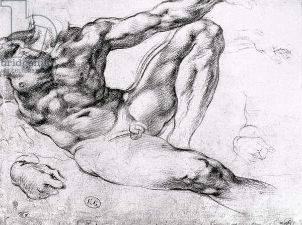 Study for the Creation of Adam (pencil on paper) (b/w photo)