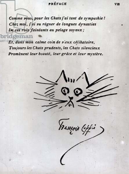 Cat's head, illustration for a poem by Francois Coppee (pen and ink on paper) (b/w photo)