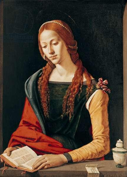 St. Mary Magdalene, 1500-10 (oil on panel)