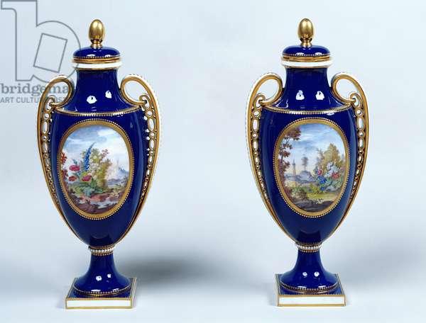 A Pair of Sèvres Vases with decorative floral medallions (porcelain)