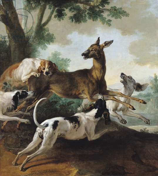 A Deer Chased by Dogs, 1725 (oil on canvas)