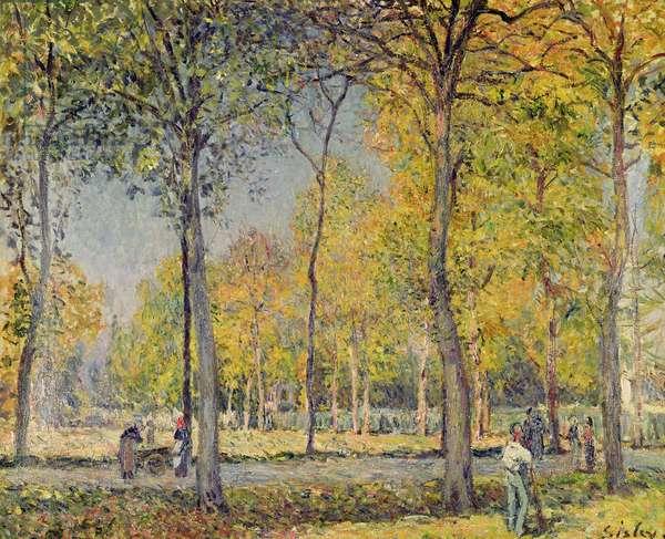 The Bois de Boulogne (oil on canvas)