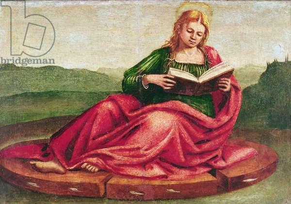 St. Catherine of Alexandria (oil on canvas)