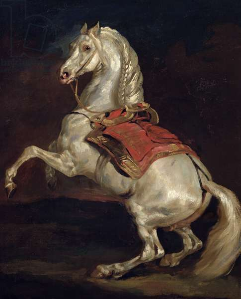 Napoleon's Stallion, Tamerlan (oil on canvas)