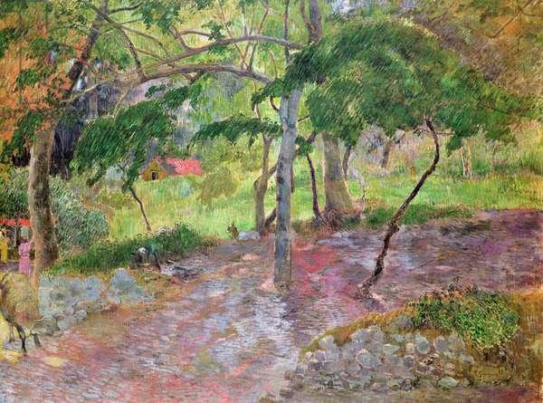 Tropical Landscape, Martinique, 1887 (oil on canvas)