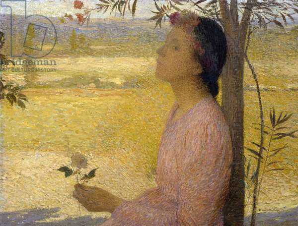 Young Woman with a Rose (oil on canvas)