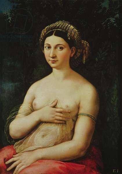La Fornarina, c.1516 (panel)