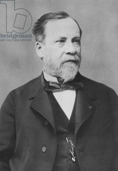 Portrait of Louis Pasteur (b/w photo)