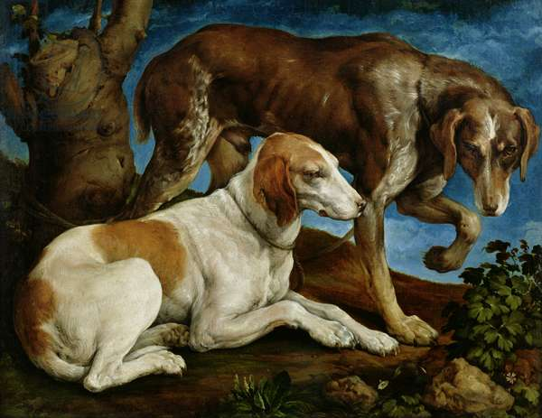 Two Hunting Dogs Tied to a Tree Stump, c.1548-50 (oil on canvas)