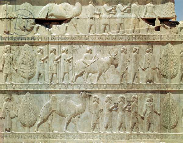 Detail of the relief frieze on the East stairway to the Apadana (audience hall) depicting delegates from the subject lands of the empire bearing lavish gifts for a ceremony, Achaemenian period, c.515 BC (limestone)