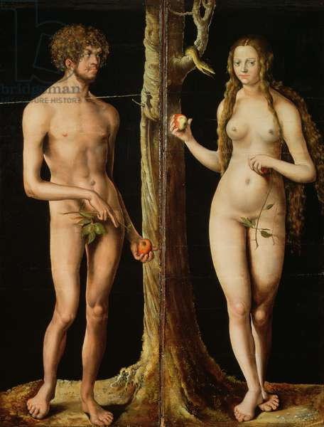 Adam and Eve, c.1508-10  (oil and tempera on lime)