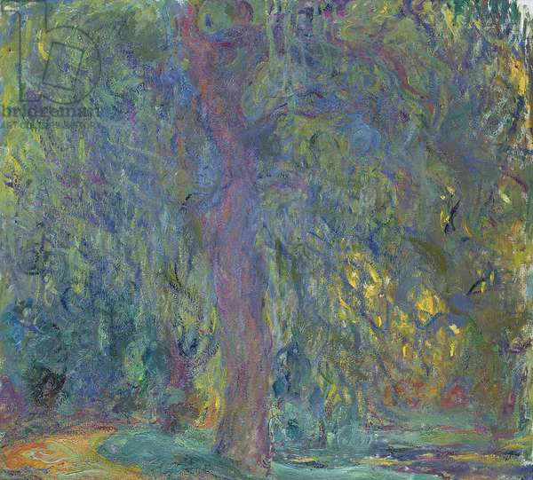 Weeping Willow, 1918-19 (oil on canvas)