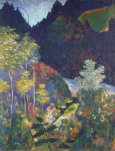 Landscape (oil on canvas)