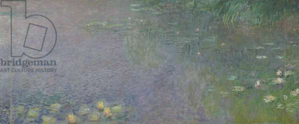 Waterlilies: Morning, 1914-18 (centre right section)