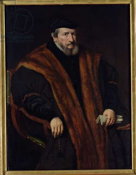 Portrait of a Man, 1564 (oil on canvas)