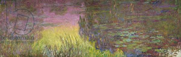 Waterlilies at Sunset, 1915-26 (oil on canvas)