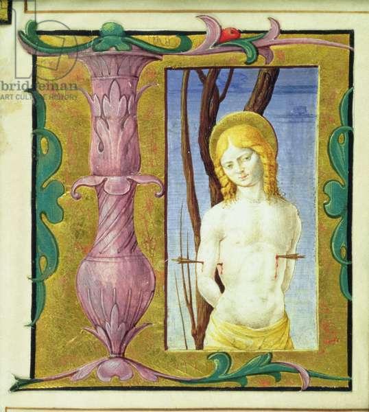 Historiated initial 'L' depicting St. Sebastian (vellum)