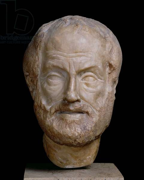 Aristotle (384-322 BC) Roman copy of a Greek original (marble)