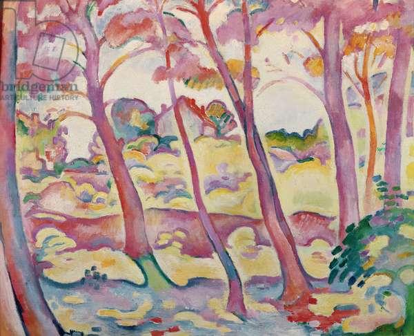 Landscape of La Ciotat, 1906 (oil on canvas)