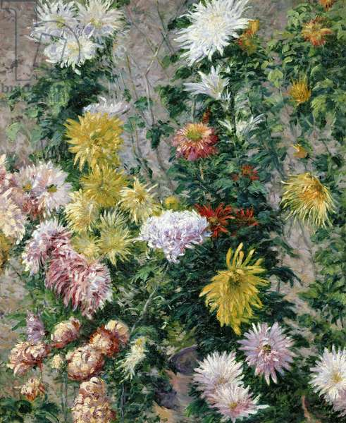White and Yellow Chrysanthemums, 1893 (oil on canvas)
