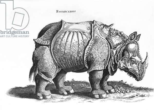 Rhinoceros, no.76 from 'Historia Animalium' by Conrad Gesner (1516-65) published in July 1815 (engraving) (b/w photo)