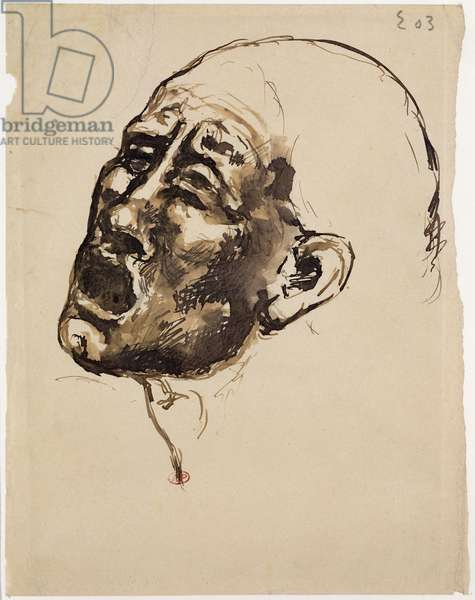 Head of a woman screaming, 1903 (pen & ink on paper)