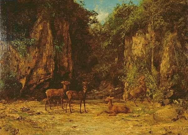 Herd of Red Deer at Dusk (oil on canvas)