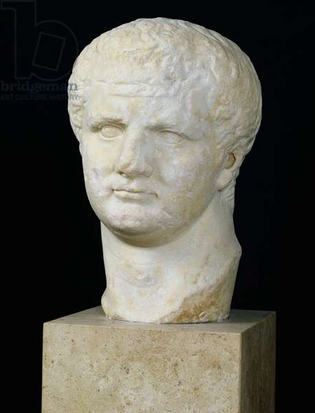 Head of Titus (39-81) (marble)