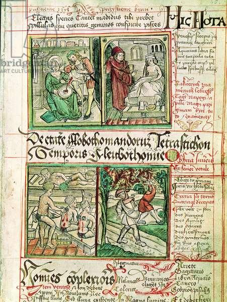 How to cure illnesses, from 'Tractatus de Pestilencia' (vellum)