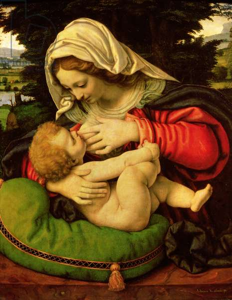 The Virgin of the Green Cushion, 1507-10 (oil on panel)