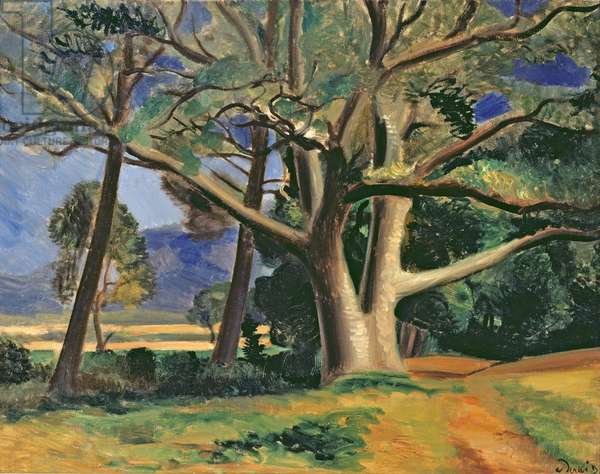 The big tree, c.1929-30 (oil on canvas) (also see 287578)
