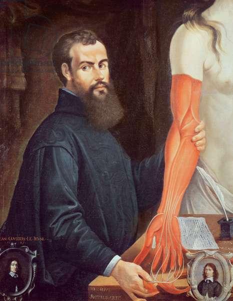 Andreas Vesalius (1514-64) (oil on canvas)