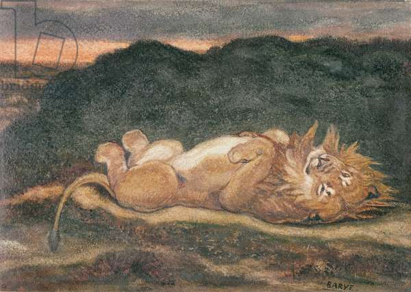Lion Resting on his Back (w/c on paper)