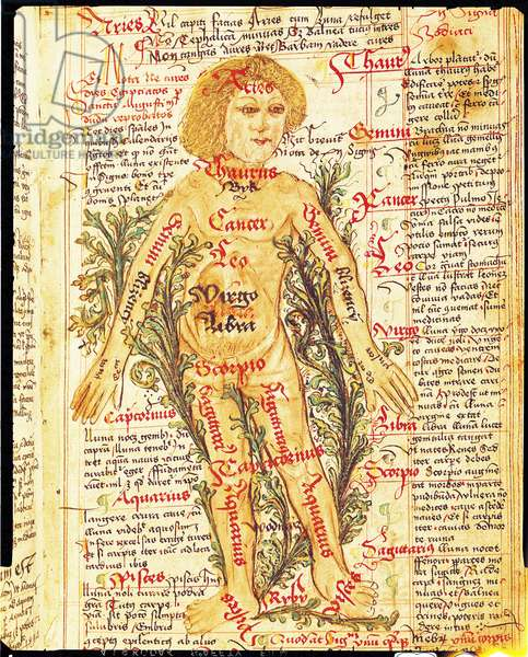 Influence of the stars on illnesses of the human body, from 'Tractatus de Pestilencia' (vellum)