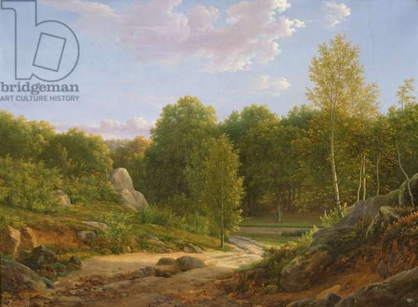 View of Fontainebleau Forest, 1829 (oil on canvas)