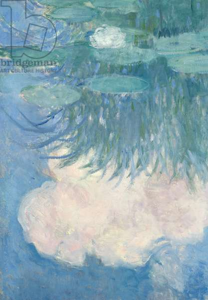 Waterlilies, detail, 1914-17 (oil on canvas) (see also 82318)