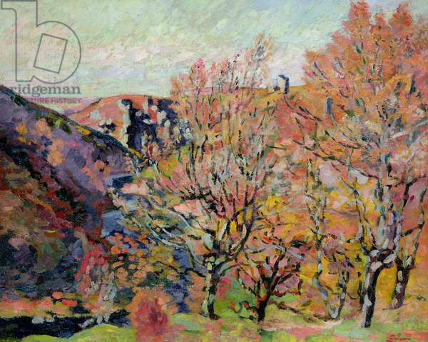 The Valley of the Sedelle in Crozant, c.1898 (oil on canvas)