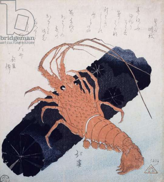 Langoustine with a Block of Charcoal, c.1830 (colour woodblock print)