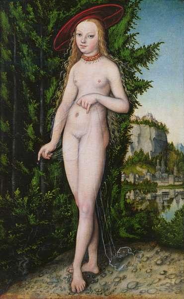 Venus in a landscape, 1529 (oil on panel)