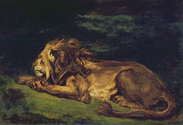 Lion Resting (oil on canvas)