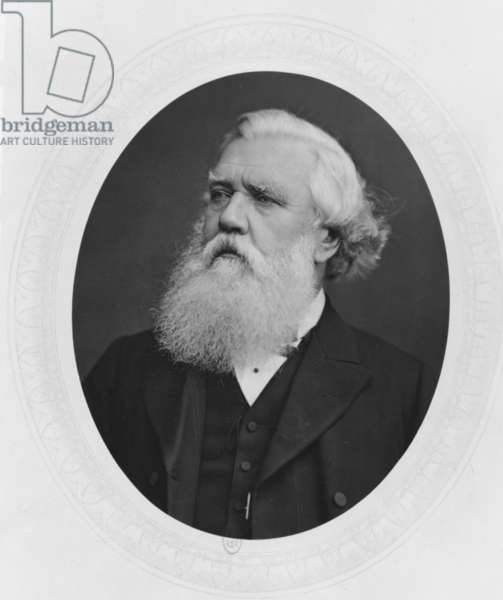 Portrait of Henry Layard, c.1880 (b/w photo)