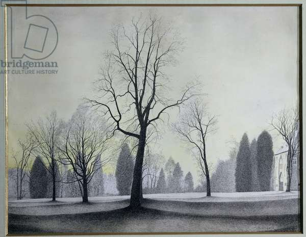 The Park, Trees, 1944 (pen & ink and w/c on paper)