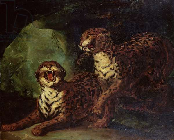 Two Leopards, c. 1820 (oil on canvas)