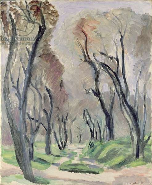 Avenue of Olive Trees, 1952 (oil on canvas)
