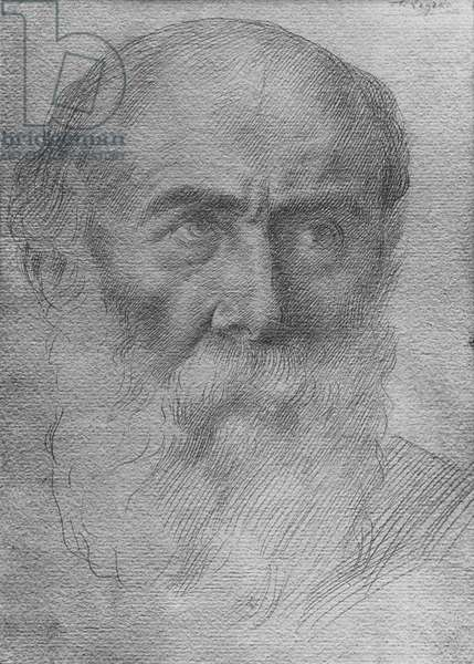 Head of a man (goldpoint on paper)