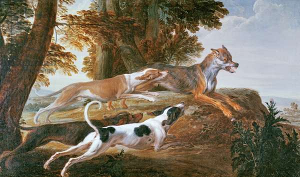The Wolf Hunt, c.1720 (oil on canvas)