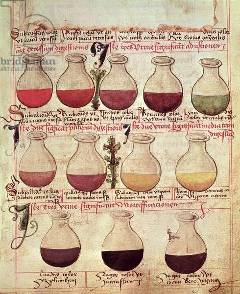 Series of flagons for urine analysis, from 'Tractatus de Pestilencia' (vellum)